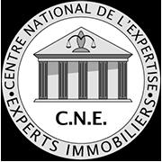 nicolas benoit expert immobilier CNE centre national de l'expertise